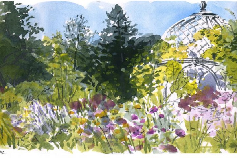 Sketching with Color at Descanso Gardens