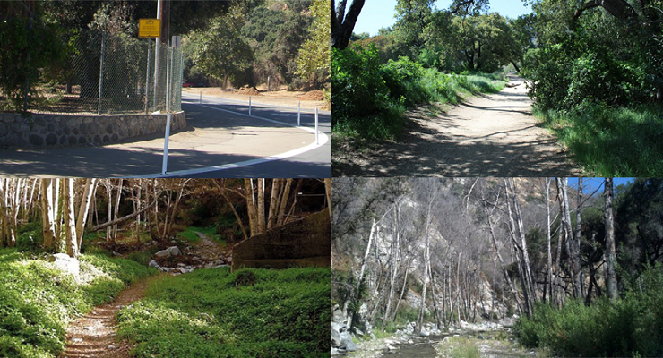Enjoy That Rose Parade Weather! Here Are a Half Dozen Pasadena Area Hikes