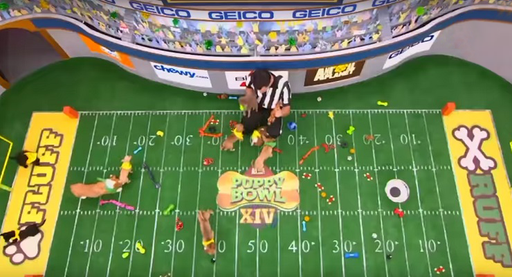 Puppy Bowl XIV's Precious Lineup Revealed at Pasadena's Langham Hotel